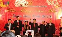 Aktivitäten der Auslandsvietnamesen in der Welt zum Neujahr