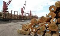 Export von Hölzern und Holzprodukten Vietnams im Jahr 2018