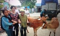 Linderung der Schmerzen der vietnamesischen Agent-Orange-Opfer