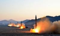 Nordkorea: Der Prozess der Denukleariseirungg kann dauerhaft ausgesetzt werden