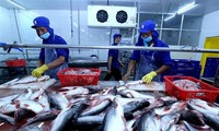 2019: Die Fischerei setzt sich zum Ziel, das Exportvolumen von zehn Milliarden US-Dollar zu erreichen