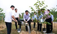 Premierminister Nguyen Xuan Phuc startet das Baumanpflanzfest in Nghe An