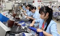 Erstes Halbjahr: Wirtschaftswachstum in Vietnam liegt bei 6,76 Prozent