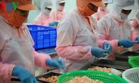 Vietnam targets 9 billion USD in seafood export in 2018