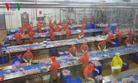 Vietnam posts record trade surplus in H1