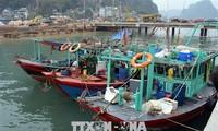 Fishing to be banned at Ha long Bay