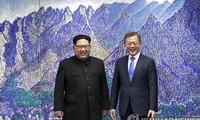 ประชามติโลกต่อผลการพบปะสุดยอดสองภาคเกาหลี