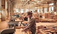 การส่งออกผลิตภัณฑ์จากป่าไม้ของเวียดนามเพิ่มขึ้นเกือบร้อยละ20ในช่วง6เดือนต้นปี