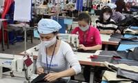 Vietnam-ILO cooperation on sustainable employment