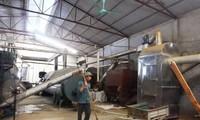 越南最大鱼粉生产厂投入活动