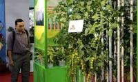胡志明市农民参与科技创新