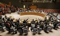 俄罗斯向联安理会提交有关叙利亚问题的决议