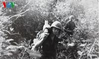 越美友协会见美国越战老兵组织代表团