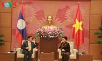 越南国会主席阮氏金银会见老挝总理通伦