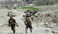 IS 在阿富汗东部打死18名士兵