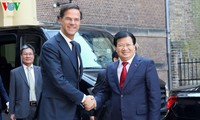 越南政府副总理王庭勇会见荷兰首相吕特