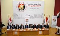 埃及:48个非政府组织获批参加总统选举监督工作