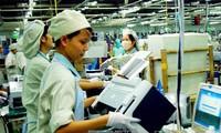 澳大利亚智库罗伊国际政策研究所高度评价越南重组经济结构进程