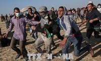 加沙地带冲突 数十人伤亡