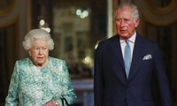 英国查尔斯王子获批准担任下一任英联邦元首