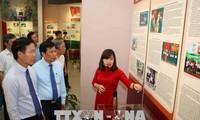 胡志明主席诞辰128周年系列纪念活动举行