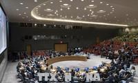 美国否决联安理会关于保护巴勒斯坦人的决议草案