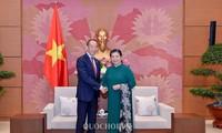 越南国会常务副主席丛氏放会见世界卫生组织西太平洋区域主任