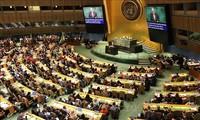越南是国际社会负责任的成员国并坚持走和平发展道路