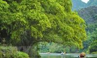 马来西亚媒体称越南旅游持续向好