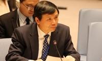 越南有巨大的机会成为联合国安理会非常任理事国