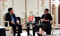 越南和印度尼西亚继续促进专属经济区重叠海域划界谈判