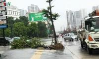 """越南各地克服台风""""韦帕""""影响"""