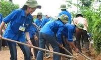 Starke Entwicklung der Bewegungen der Freiwilligen in Vietnam