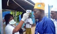 Mehr als 2800 Todesopfer wegen Ebola-Epidemie