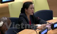 Vietnam verpflichtet sich, mit den UN-Organisationen bei Umsetzung der Gesetze zusammenzuarbeiten