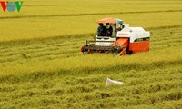 Die Marke zu verbessern, um den Wert der landwirtschaftlichen Produkte zu bekräftigen