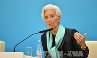IWF: Handelssubvention bremst Weltwirtschaftswachstum