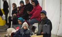 Zahl der Asylsuchenden in Europa sinkt im vergangenen Jahr