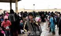 UNO warnt vor Nutzung von Chemiewaffen in Mosul