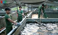 Ausstellung der Produkte der Aquakultur Vietnam 2017