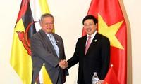 APEC 2017: Außenminister Pham Binh Minh trifft 2. Außenminister Bruneis