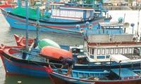 Provinzen des Landes setzen Maßnahmen gegenüber Tiefdruckgebiet