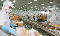 Vietnam strebt eine nachhaltige und verantwortungsvolle Fischerei an