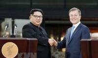 Südkorea und Russland unterstützen Zusammenarbeit mit Nordkorea