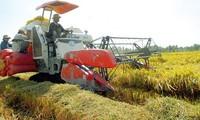 Fortschritte in den ländlichen Gegenden nach 10-jähriger Umsetzung des Beschlusses 26