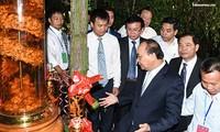 Premierminister Nguyen Xuan Phuc setzt auf Ginseng Ngoc Linh