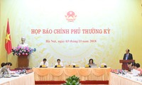 Turnusmäßige Pressekonferenz der vietnamesischen Regierung
