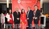 Aktivitäten zum Tetfest der Auslandsvietnamesen