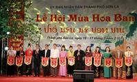 Bauhinien-Festival in Nordwesten Vietnams