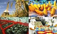 Offizieller Export Vietnams nach China